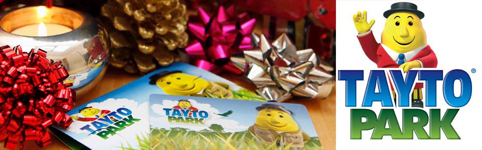 visit santa at tayto park