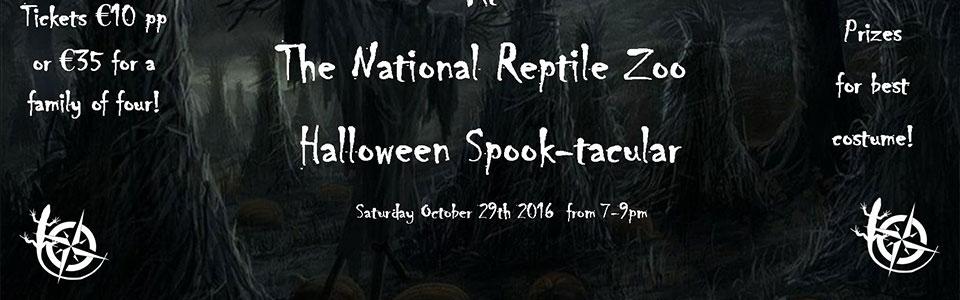 halloween national reptile zoo kilkenny